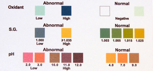 Color Chart for Adultrants